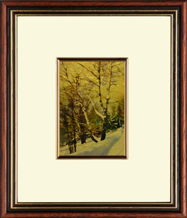 Téli erdő